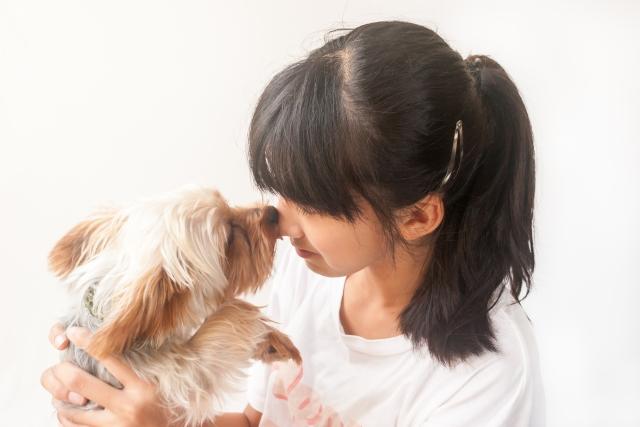 ひともペットも癒されたい!ペットなセラピー、ペットのセラピー市場(2)