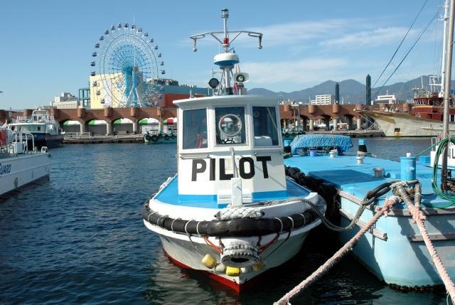 海のパイロットたち 職業人集団 -日本水先人連合会-