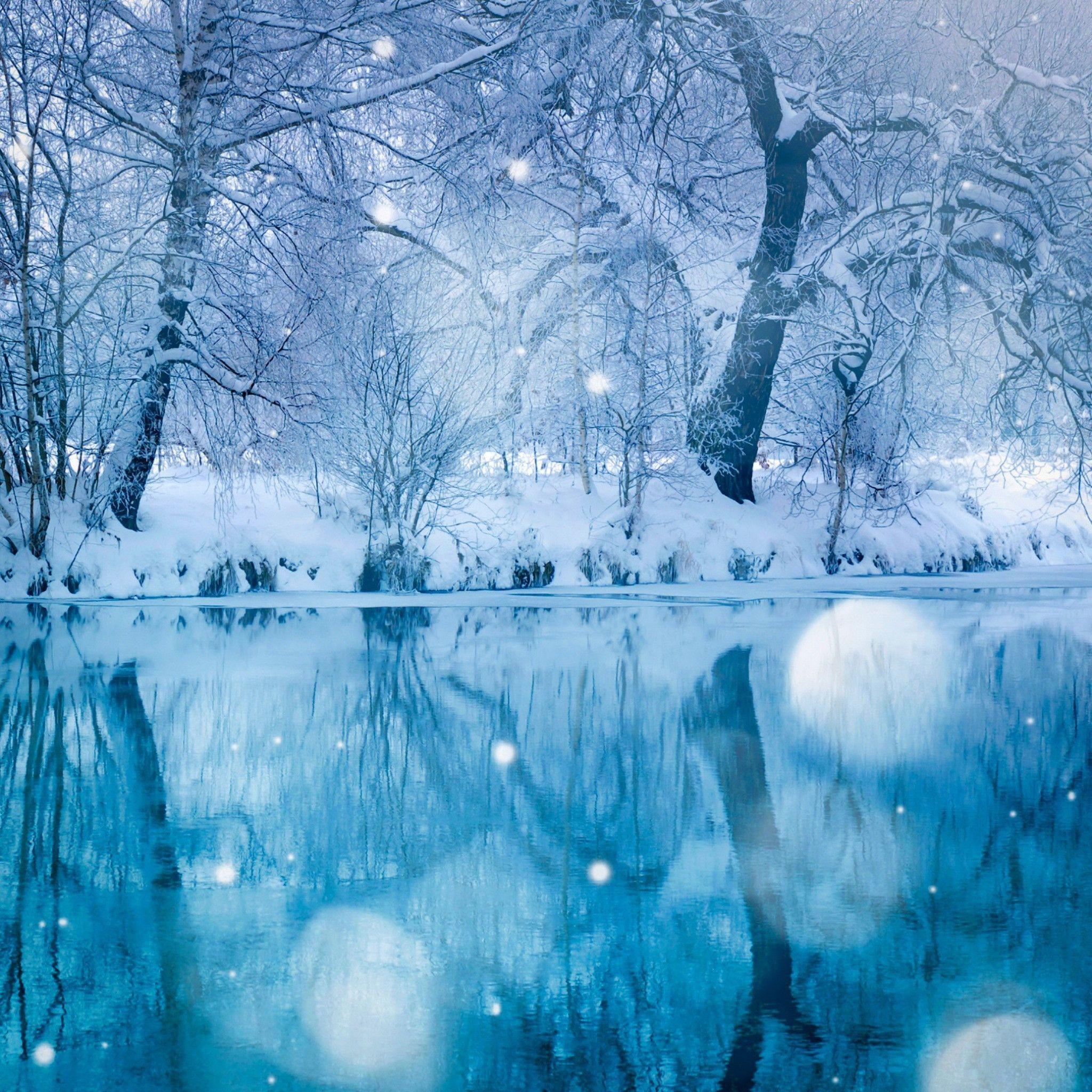 【アニメオタク】冬アニメ勝手な所感 「無職転生」、そしてダークホースの「ワンエグ